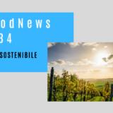 vinosostenibile